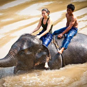 Thailand2008-3-2.jpg