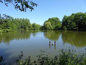 terrain à Quelaines-Saint-Gault (53)