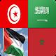 وصلة أعلام الدول العربية APK