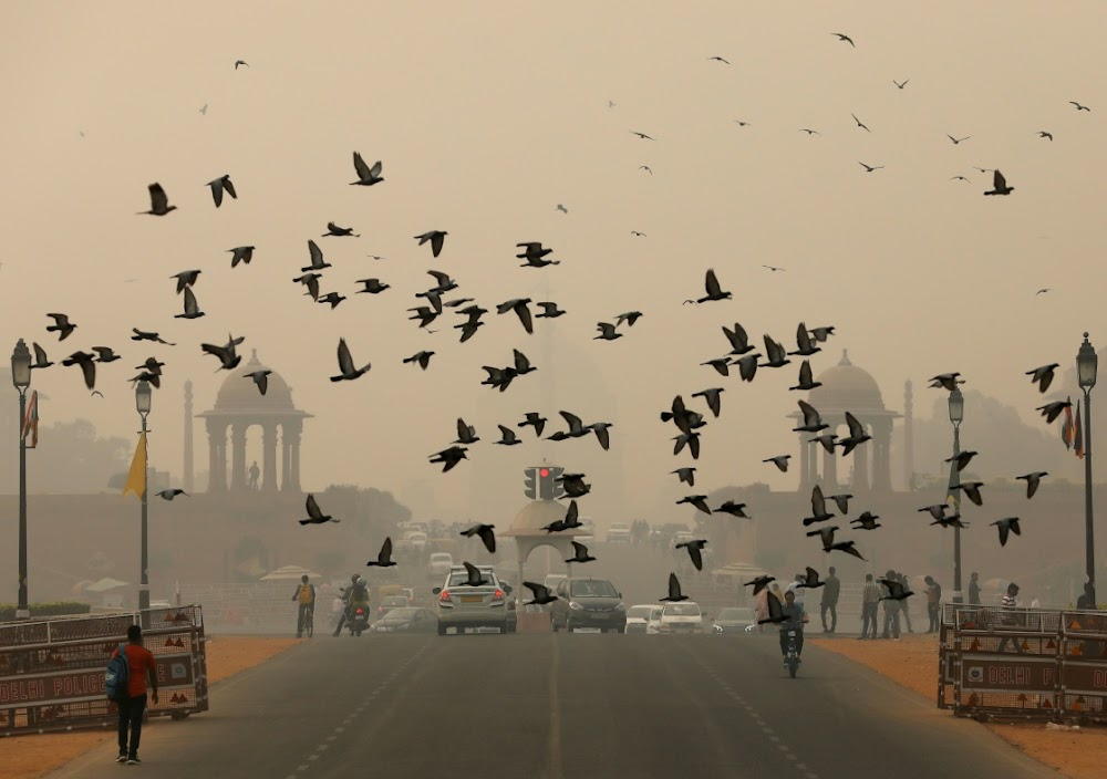 New Delhi pollution called a public health emergency
