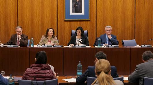 """Crespo lamenta que las medidas del Real Decreto Ley """"son insuficientes"""""""