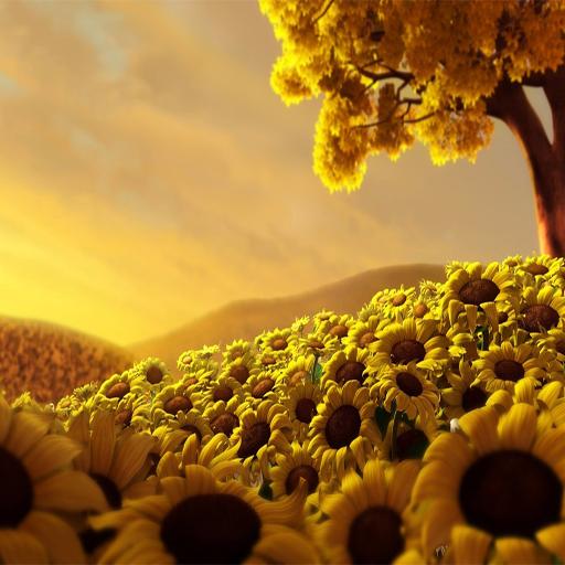美麗的高清自然背景 攝影 App LOGO-APP試玩