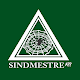 Sindmestre icon