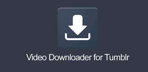 tumblr video downloader pc
