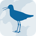 Wadvogels icon