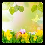Green Nature Live Wallpaper