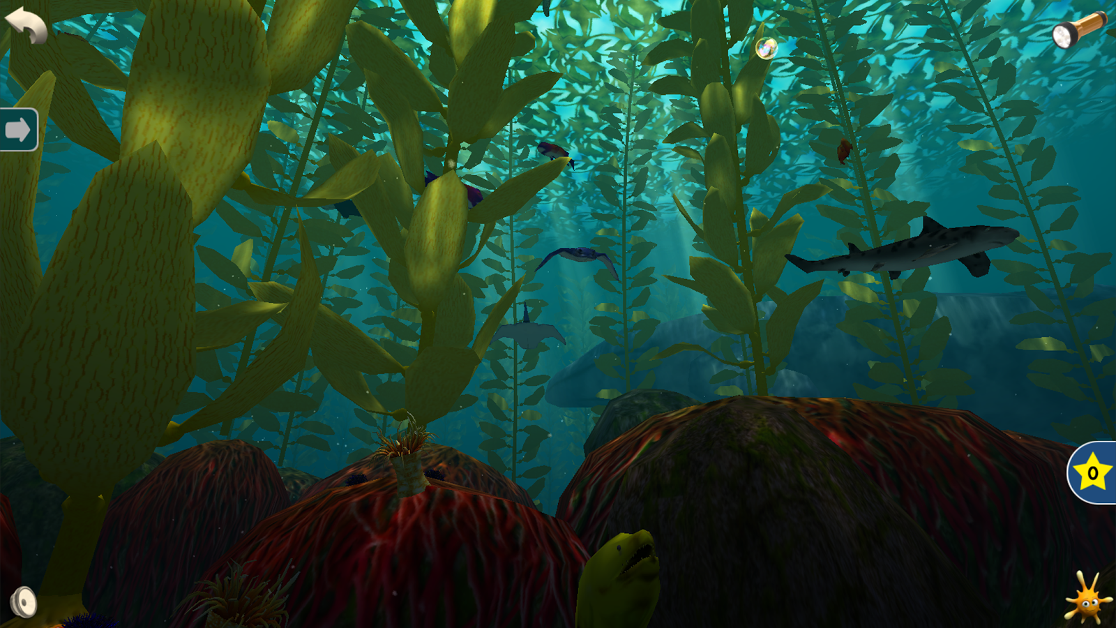 Ocean Forests- screenshot