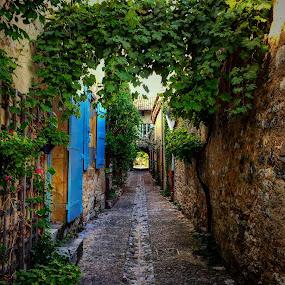 Hidden Alley by Lori Louderback - City,  Street & Park  Street Scenes
