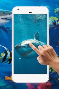 Shark Water Ripple Live Wallpaper 4