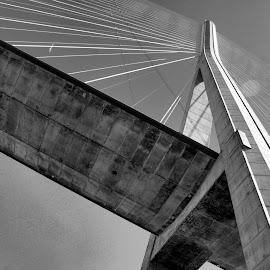 Pont Normandie by Anita Berghoef - Black & White Buildings & Architecture ( pont normandie, black and white, france, bridge, architecture,  )