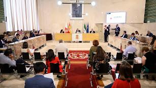 Plano general del Pleno del Ayuntamiento de Almería