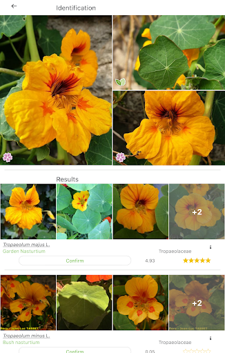 PlantNet Plant Identification 3.0.7 screenshots 8