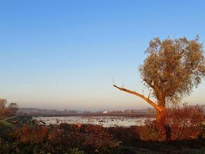Photo: Uitzicht over de Blankert richting het westen