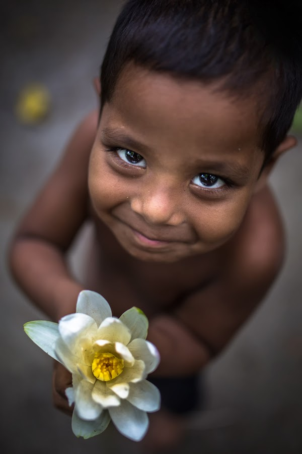 BIKARNO by Mauro De Bettio - Babies & Children Child Portraits ( amazing, bangladesh, glances, flowers, light, travel photography, colours, eyes,  )