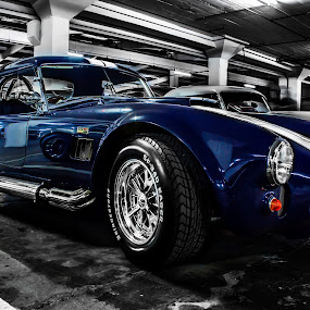 Blue Cobra by Amy Greyvenstein - Transportation Automobiles (  )