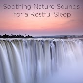Soothing Nature Sounds for a Restful Sleep