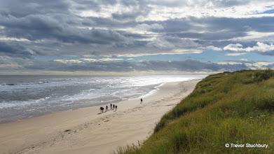 Photo: Forvie National Nature Reserve