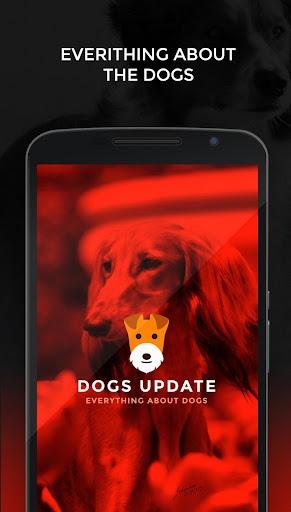 免費下載娛樂APP|Dogs Update app開箱文|APP開箱王