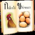 ฝึกอ่าน ก ไก่ - ฮ นกฮูก icon