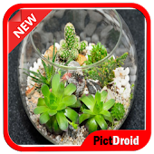 DIY Simple Terrarium Android APK Download Free By Pictdroid