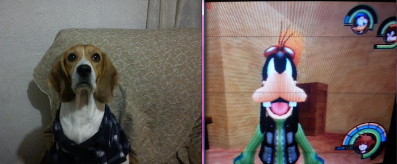 Photo: Mi Yunita VS Goofy