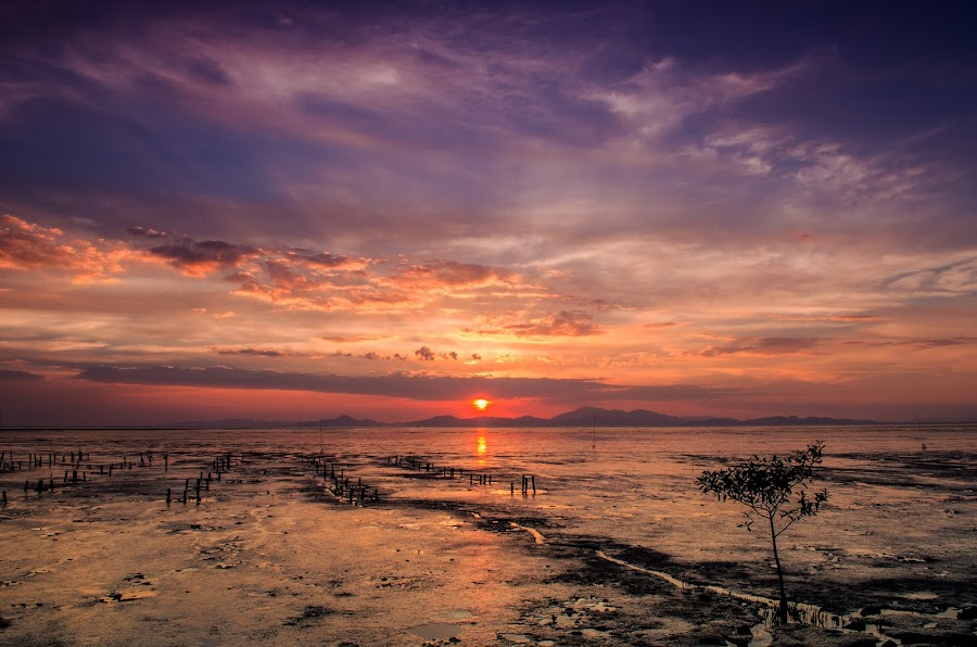 Kuala Perlis Sunset by Mohammad Khairizal Afendy - Landscapes Sunsets & Sunrises ( shore, reflection, tropical, malay, ocean, travel, beach, landscape, coast, sun, sky, nature, asia, evening, water, clouds, sand, beautiful, sea, malaysia, tourism, relaxation, dusk, malaysian, vacation, sunset, outdoor, outdoors, summer, sunrise,  )