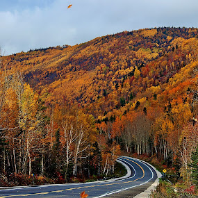 ROAD TRIP by Gary Colwell - Landscapes Mountains & Hills ( quebec, canada, fall, gaspe,  )