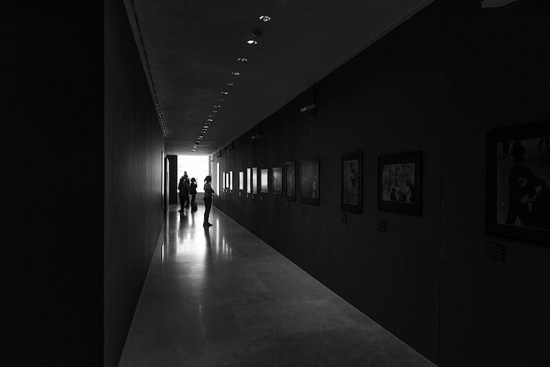 In mostra di Domenico Cippitelli