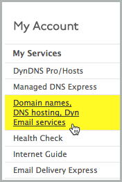 Domain names, DNS hosting, Dyn Email services option is selected.