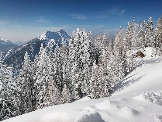 Alpi giulie di Pinco_Pallino