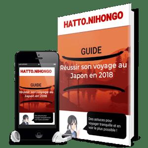 ebook preparer son voyage au japon