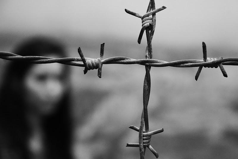 Auschwitz: gli orrori del metallo  di Clara