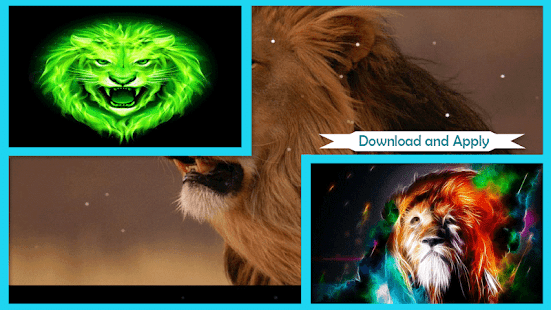 Lions Wallpaper - náhled