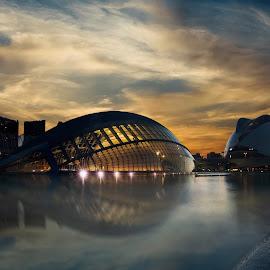 Ciutat de les Arts i les Ciències by Frank Quax - Buildings & Architecture Public & Historical ( spain, city, construction, detail, colors, architecture )