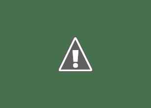 Photo: Plant Bike. Vicki Pelton