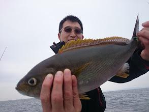 Photo: ジャンボイサキ!