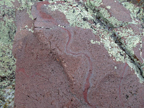 Photo: Patterns in the basalt