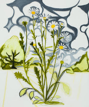 """Photo: Oxeye Daisy Drawing 3, pencil and acrylic on mylar, 36"""" x  30"""", 2012"""