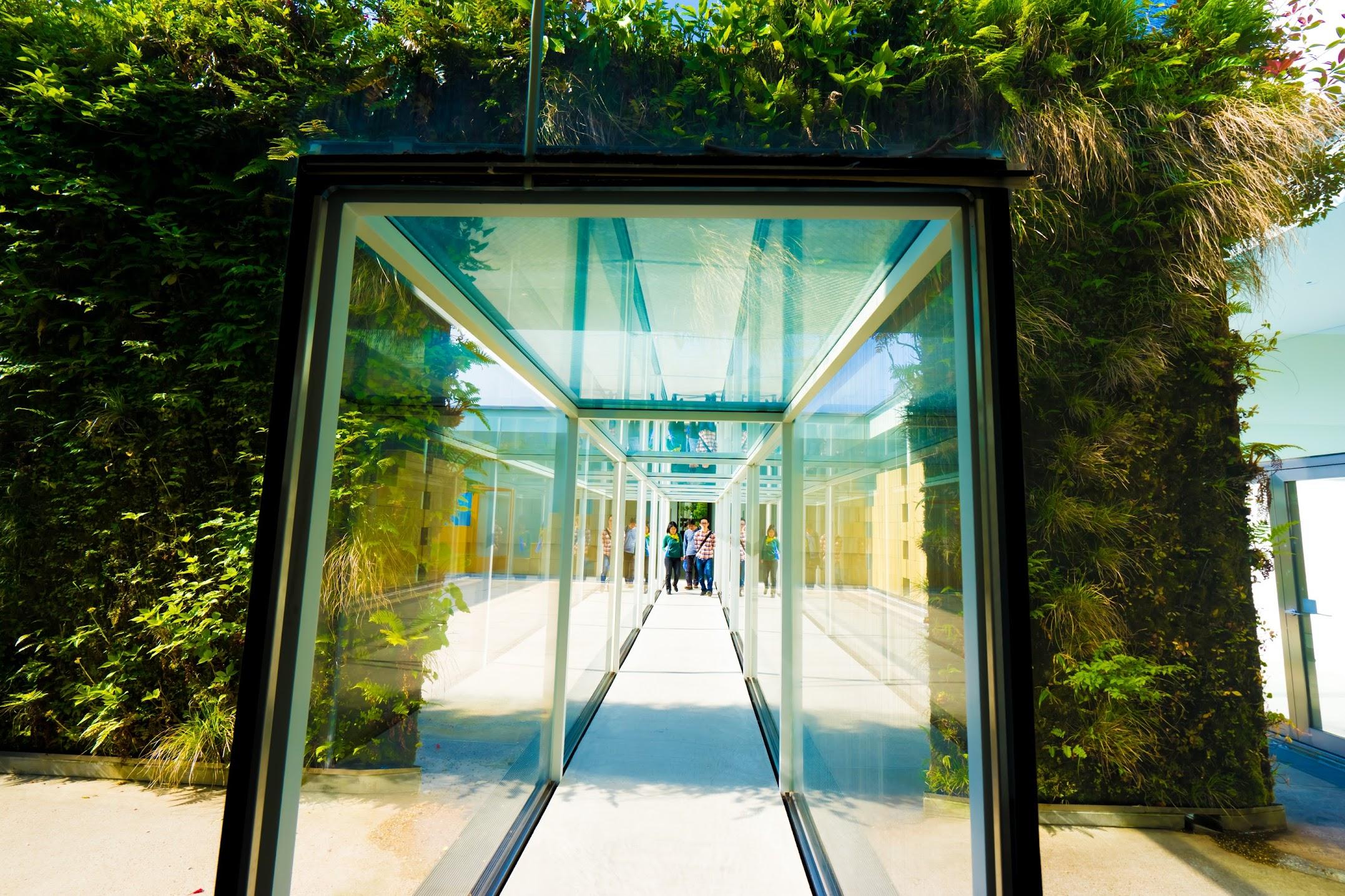 金沢21世紀美術館10