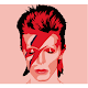 David Bowie Quotes, Lyrics and Facts Download on Windows