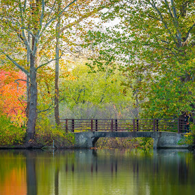 Bridging Beauty  by Lynn Kirchhoff - Landscapes Waterscapes ( reflection, autumn, morton arboretum, lake marmo, bridge, landscape,  )