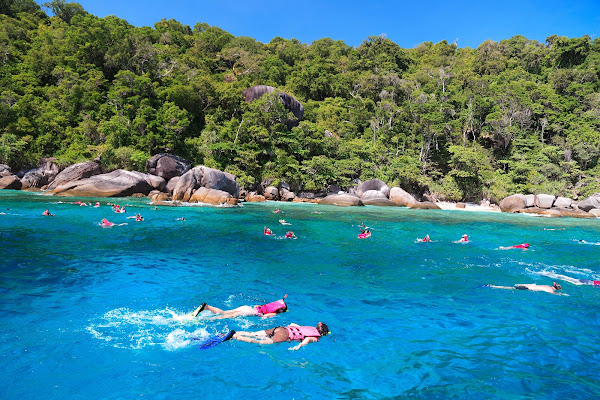 Snorkel and swim in crystal clear blue sea water on Koh Similan