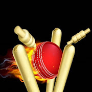 Play Live Cricket Game Home