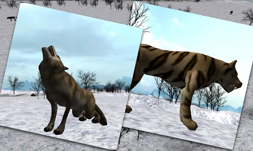 Wild Animals Attack 3D