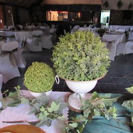 by Orpa Wessels - Wedding Reception (  )