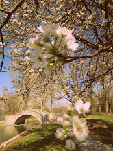 Photo: 60's style photo of cherry blossoms framing an old-fashioned stone bridge over a pond at Eastwood Park in Dayton, Ohio.