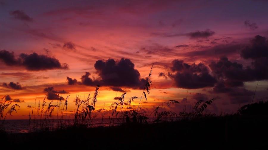 P1020516 by Ken Walz - Landscapes Sunsets & Sunrises