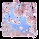 SakuraMoment Android