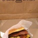 shake shack - best burger in Miami in Miami, Florida, United States
