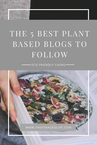 The 5 Best Plant Based Blogs to Follow - Eco-Friendly Living by The Foraged Life